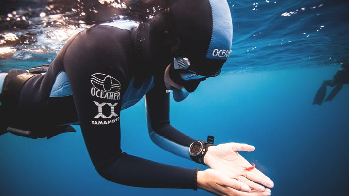 Thumbnail for Freediving Specialties